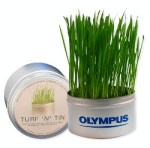 Grass giveaway