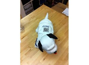 QR-Code-On-Pet-Clothing